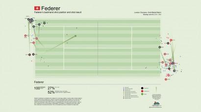 Federer Infographic